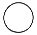 AquaUltraviolet ULTIMA II Filter O-Ring for 1,000 to 20,000