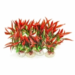 "Aquatop Plant Pack 4"" Red/Green 12 Pieces"