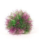 Aquatop Plant Big Purple/Green Ball 5""