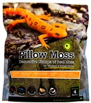 Galapagos Pillow Moss 4qt