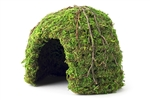 "Galapagos Mossy Dome Green 6"" Diameter"
