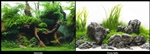"Seaview Greenspike / Amazonia 18"" x 50' Double Sided Background"