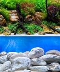 "Seaview Aqua Garden/Brightstone 24""x50' Double Sided Background"