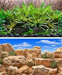 "Seaview Tropical Terrarium / Desert Sky 24""x50' Double Sided Background"