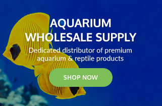 Aquarium Wholesale Supply - Shop Now